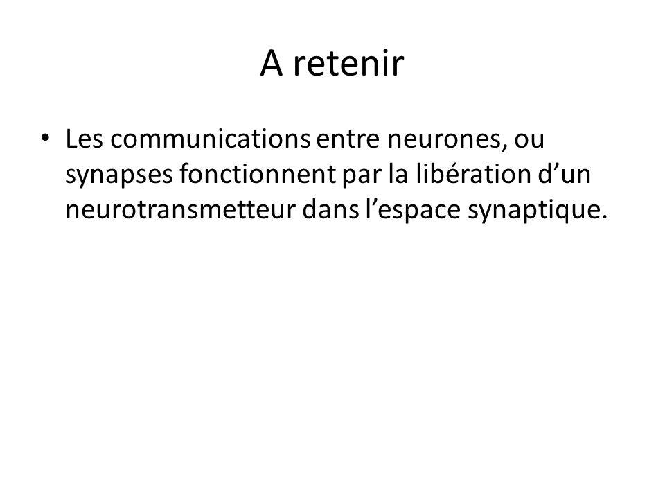 A retenir Les communications entre neurones, ou synapses fonctionnent par la libération d'un neurotransmetteur dans l'espace synaptique.