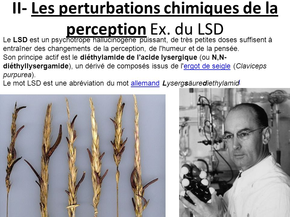 II- Les perturbations chimiques de la perception Ex. du LSD