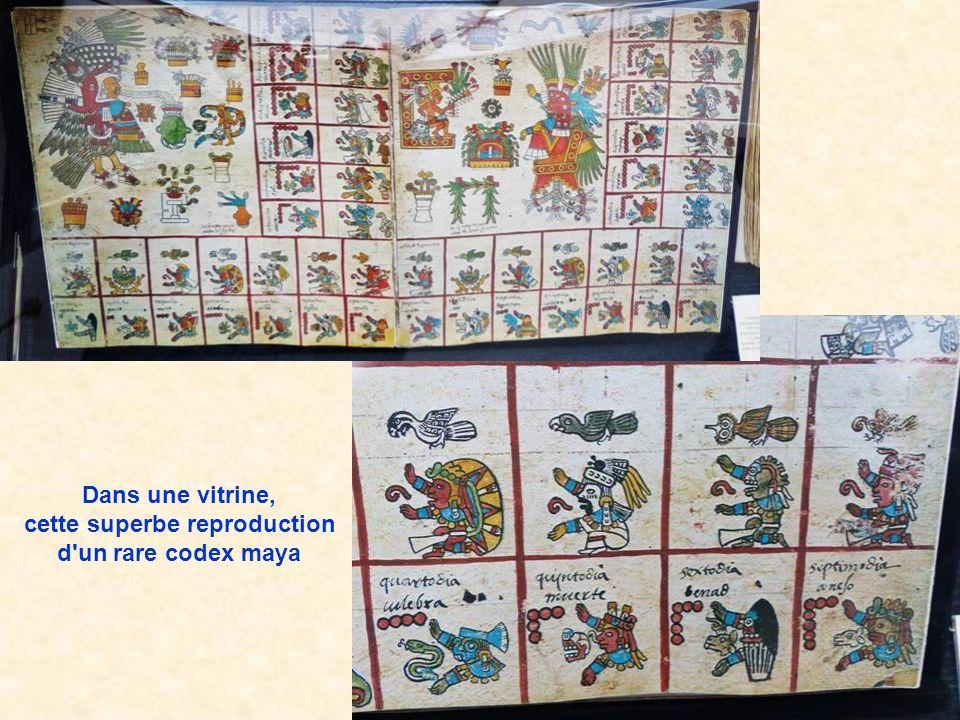 Dans une vitrine, cette superbe reproduction d un rare codex maya