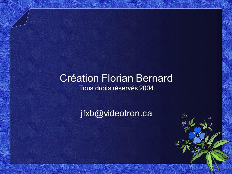 Création Florian Bernard Tous droits réservés 2004 jfxb@videotron.ca