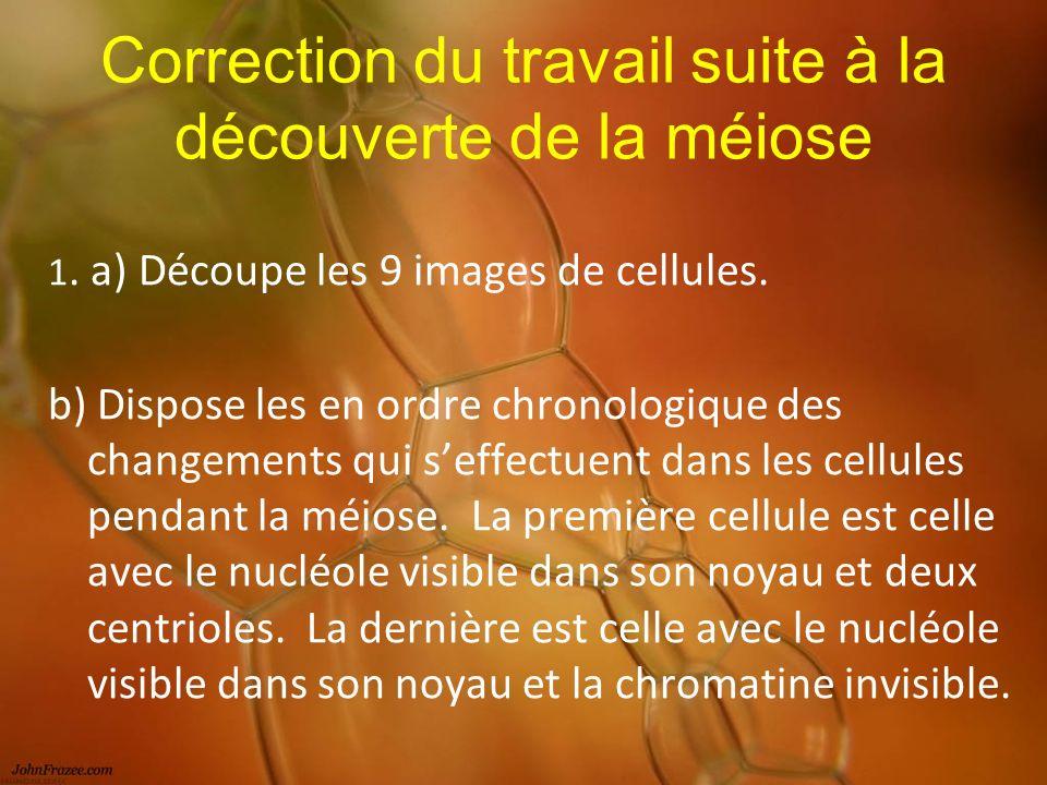 Correction du travail suite à la découverte de la méiose