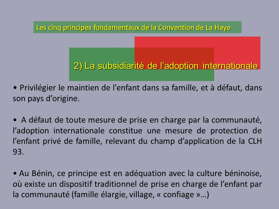 2) La subsidiarité de l'adoption internationale