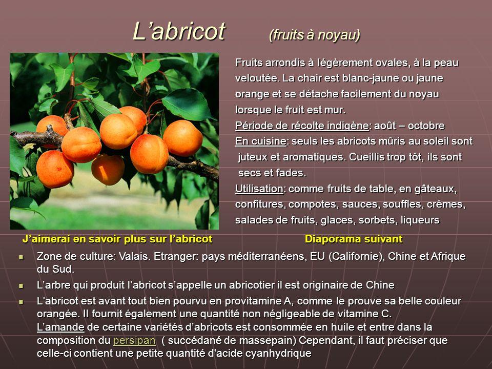 L'abricot (fruits à noyau)
