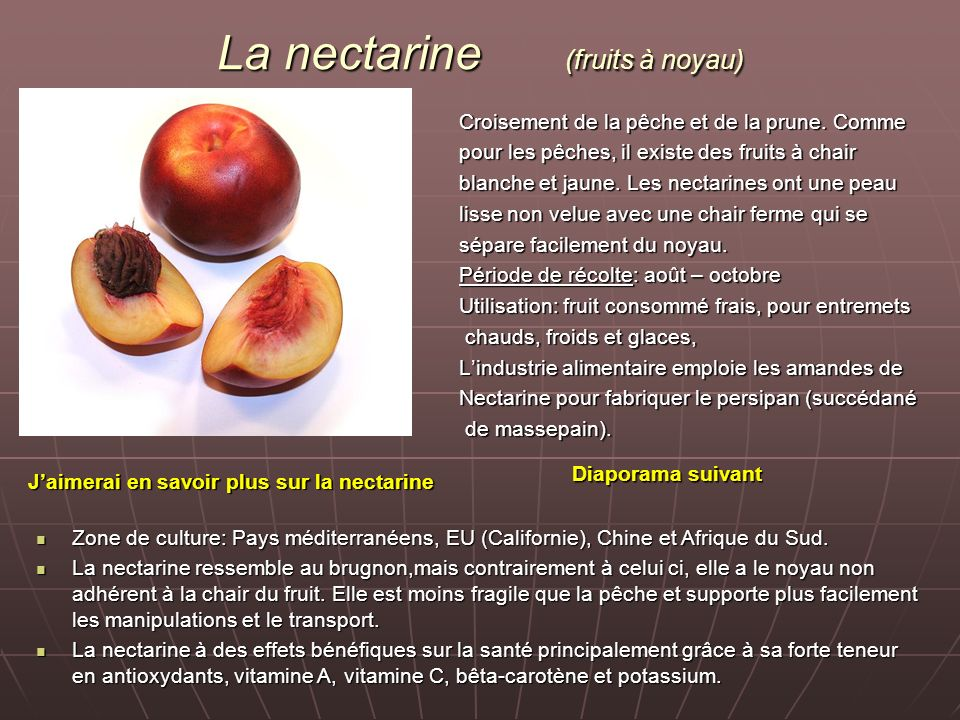 La nectarine (fruits à noyau)