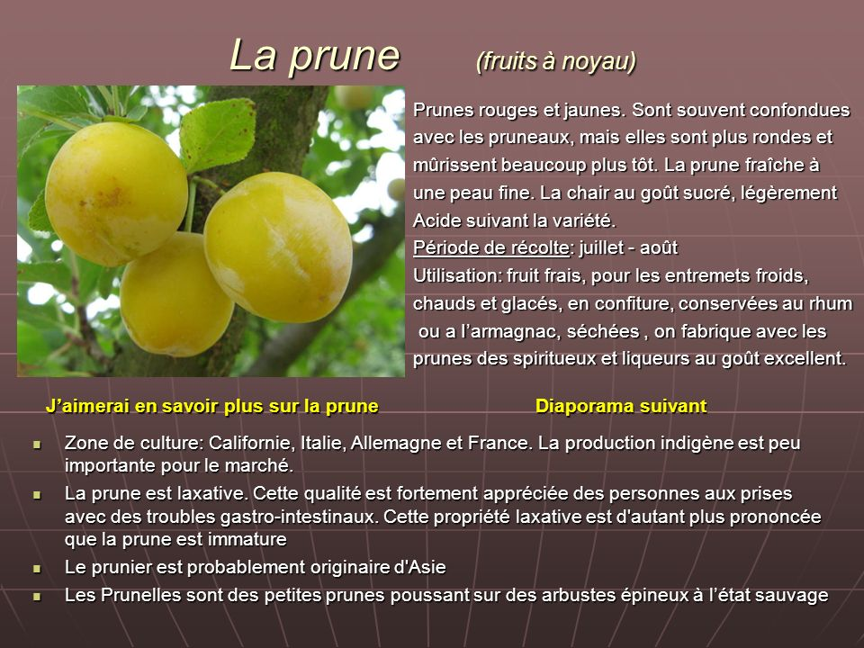 La prune (fruits à noyau)