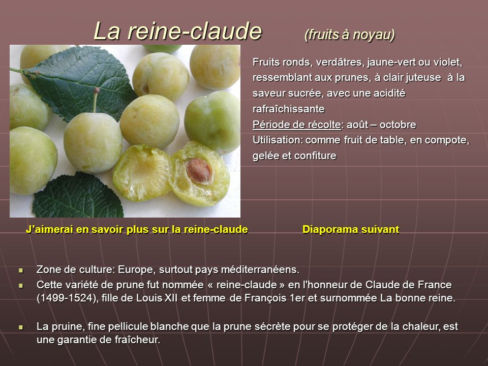 La reine-claude (fruits à noyau)