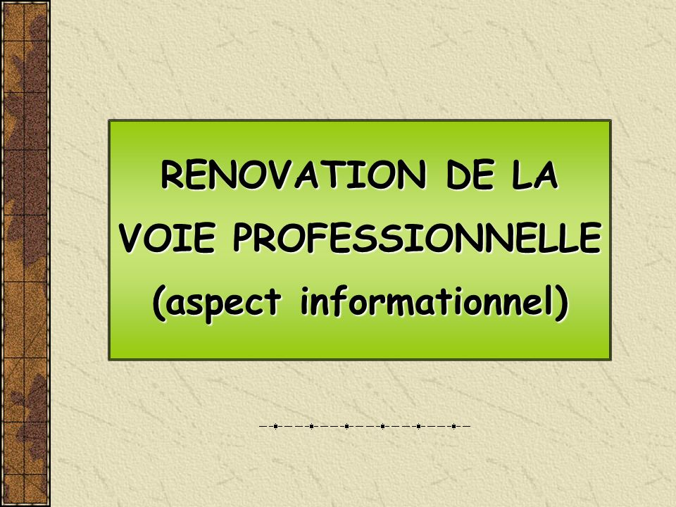 RENOVATION DE LA VOIE PROFESSIONNELLE (aspect informationnel)