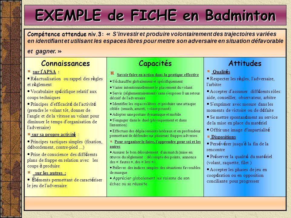 EXEMPLE de FICHE en Badminton