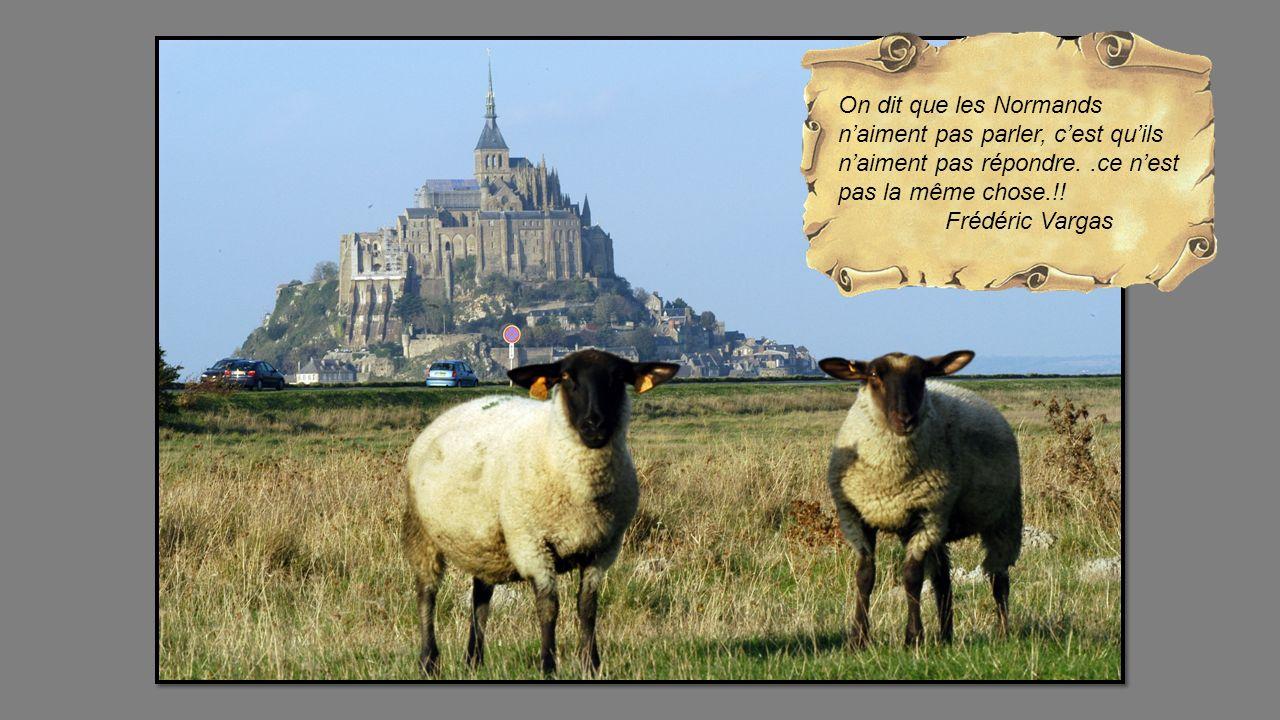 On dit que les Normands n'aiment pas parler, c'est qu'ils n'aiment pas répondre. .ce n'est pas la même chose.!!