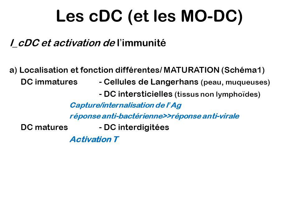 Les cDC (et les MO-DC) I_cDC et activation de l'immunité