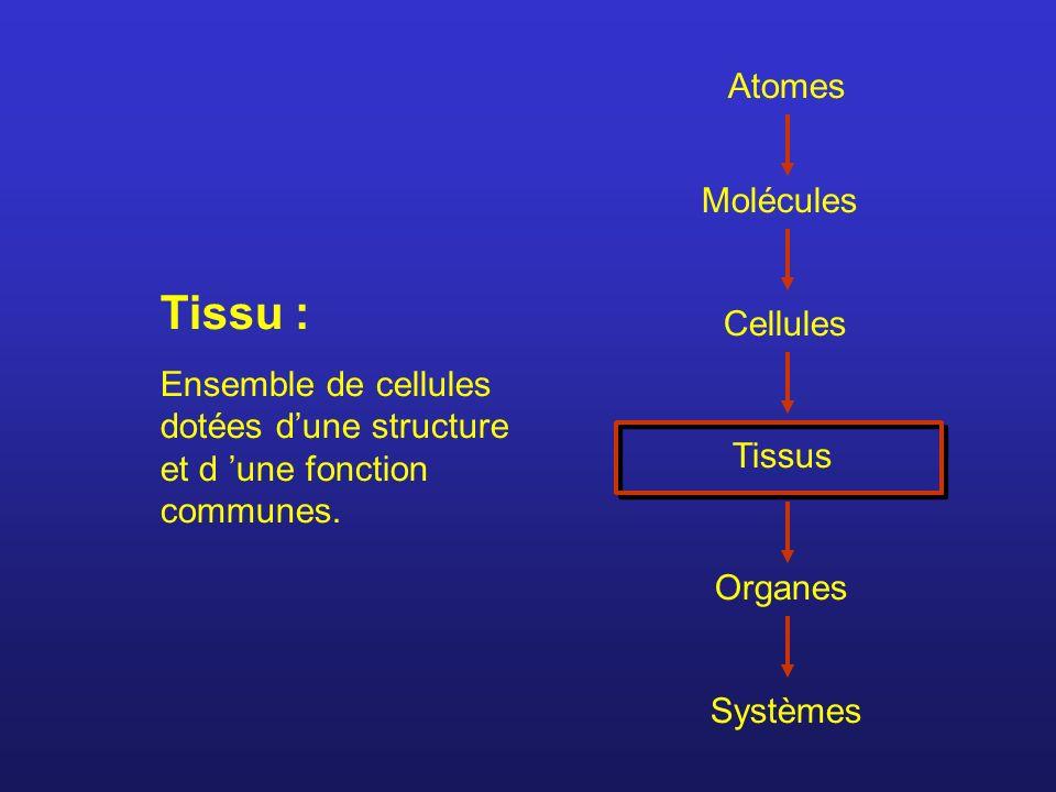 Tissu : Atomes Molécules Cellules