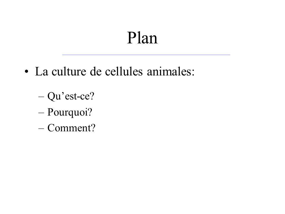 Plan La culture de cellules animales: Qu'est-ce Pourquoi Comment