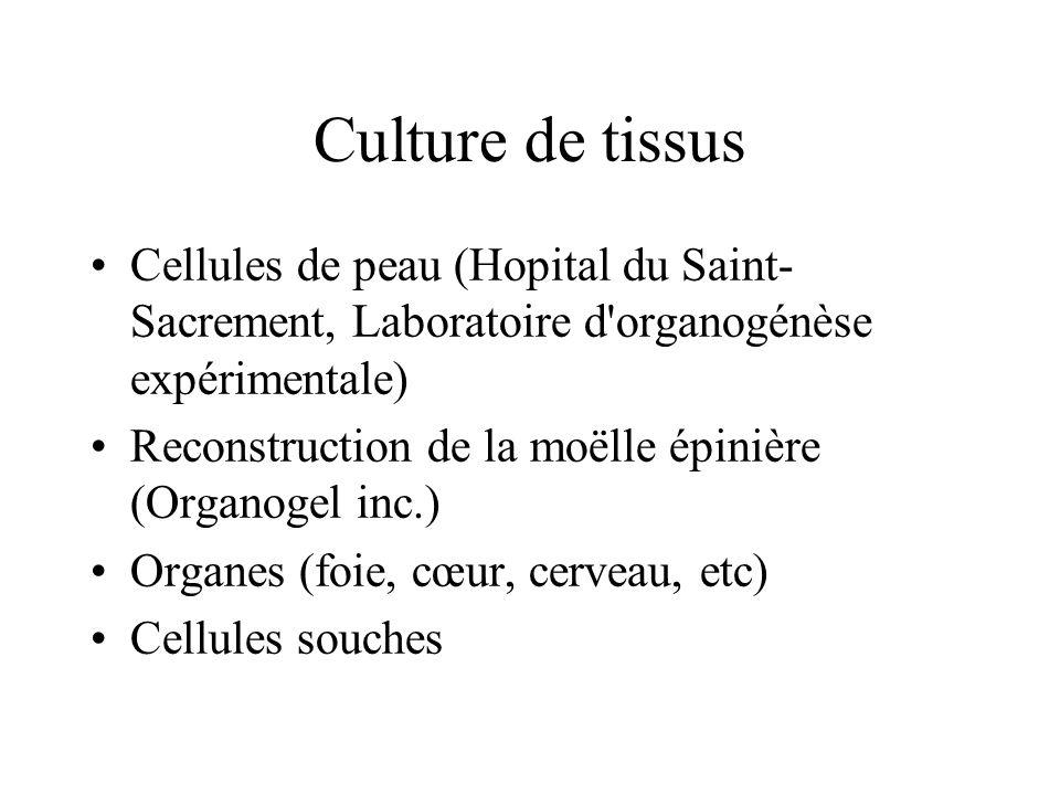Culture de tissus Cellules de peau (Hopital du Saint-Sacrement, Laboratoire d organogénèse expérimentale)