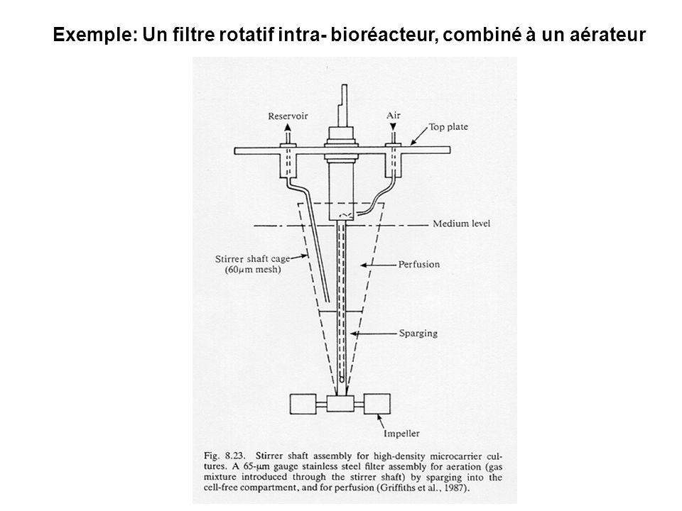 Exemple: Un filtre rotatif intra- bioréacteur, combiné à un aérateur