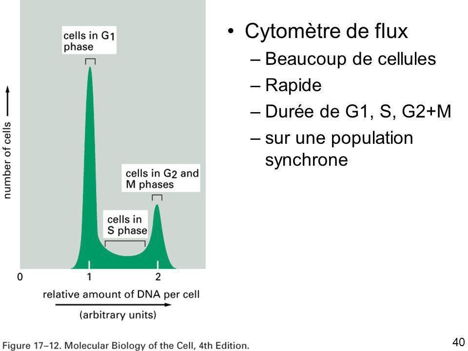 Fig 17-12 Cytomètre de flux Beaucoup de cellules Rapide