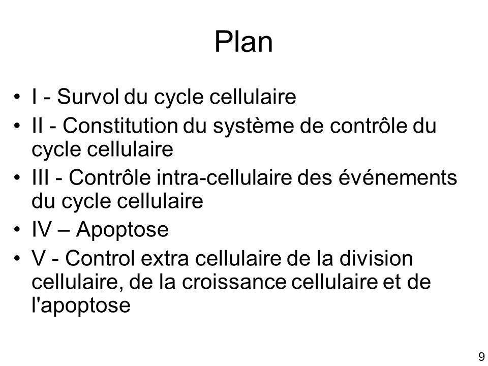 Plan I - Survol du cycle cellulaire