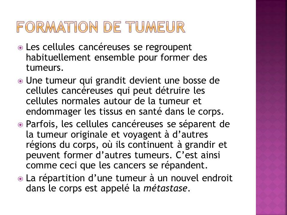 Formation de tumeur Les cellules cancéreuses se regroupent habituellement ensemble pour former des tumeurs.