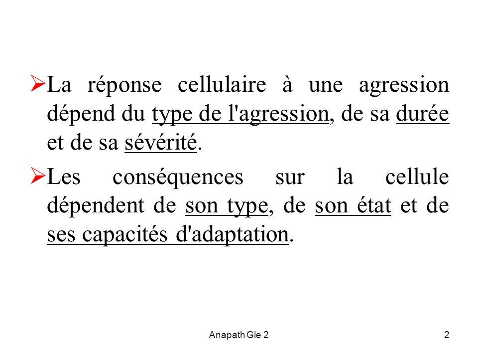 La réponse cellulaire à une agression dépend du type de l agression, de sa durée et de sa sévérité.