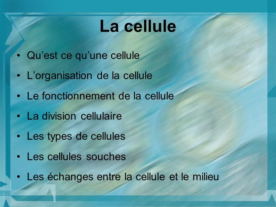 La cellule Qu'est ce qu'une cellule L'organisation de la cellule