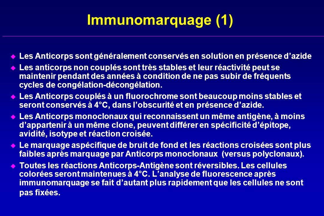 Immunomarquage (1) Les Anticorps sont généralement conservés en solution en présence d'azide.