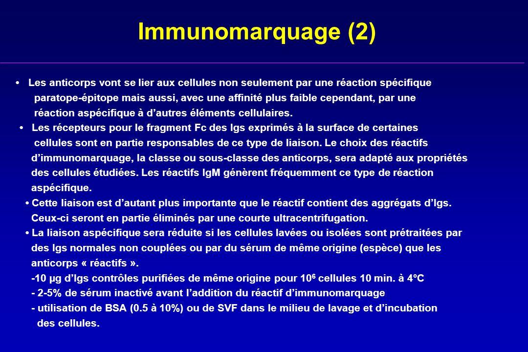 Immunomarquage (2) • Les anticorps vont se lier aux cellules non seulement par une réaction spécifique.