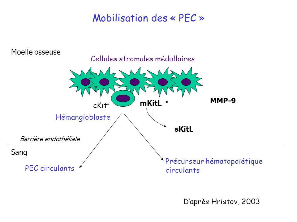 Mobilisation des « PEC »
