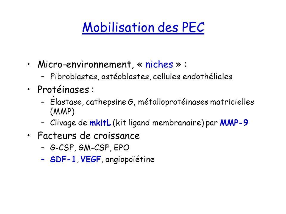 Mobilisation des PEC Micro-environnement, « niches » : Protéinases :