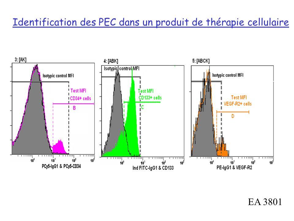 Identification des PEC dans un produit de thérapie cellulaire
