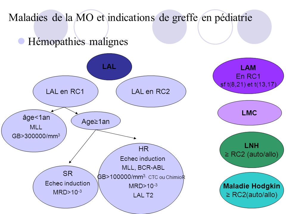 Maladies de la MO et indications de greffe en pédiatrie
