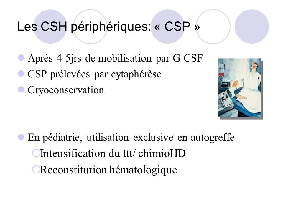 Les CSH périphériques: « CSP »