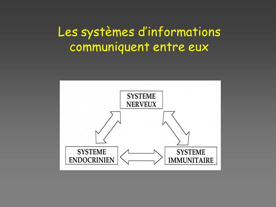 Les systèmes d'informations communiquent entre eux