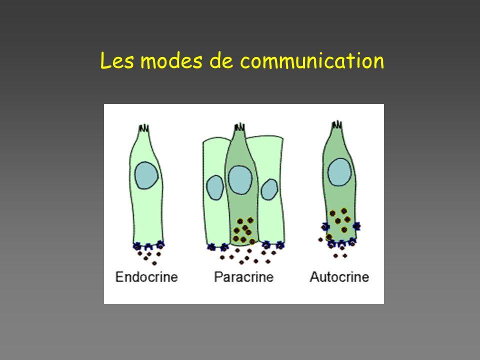 Les modes de communication