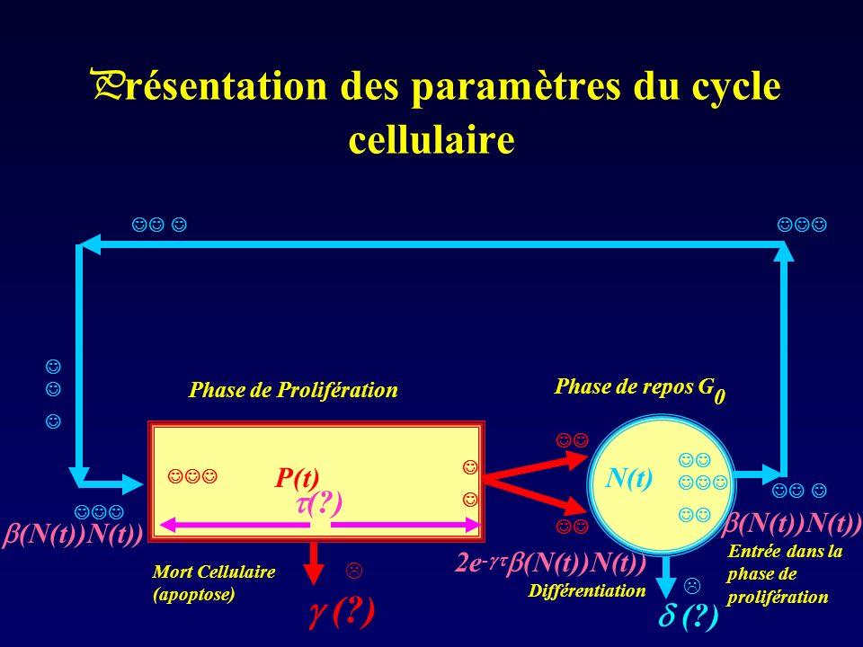 Présentation des paramètres du cycle cellulaire