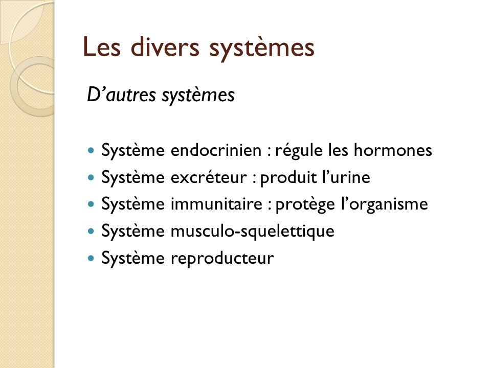 Les divers systèmes D'autres systèmes