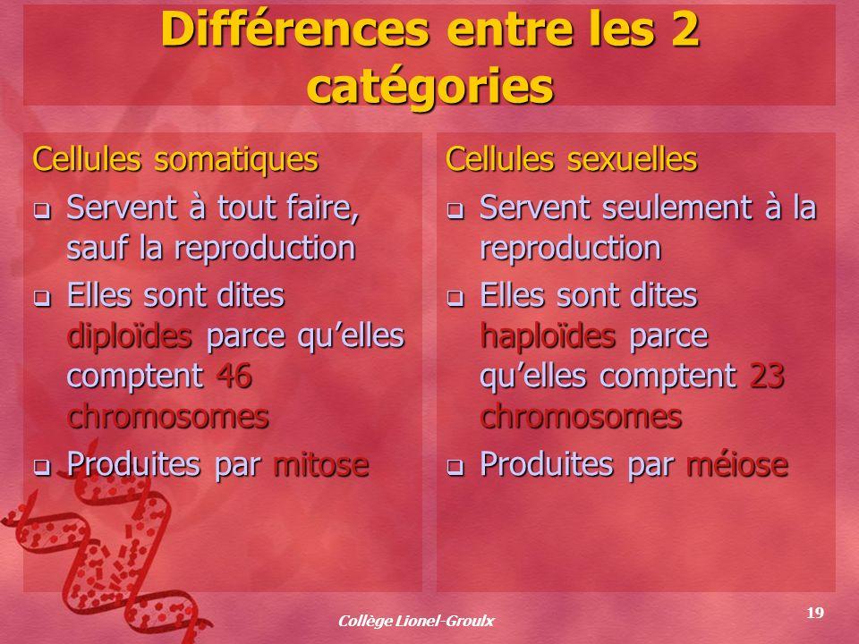 Différences entre les 2 catégories