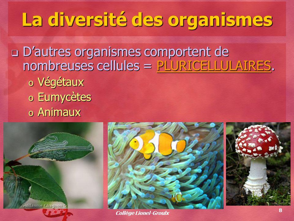 La diversité des organismes