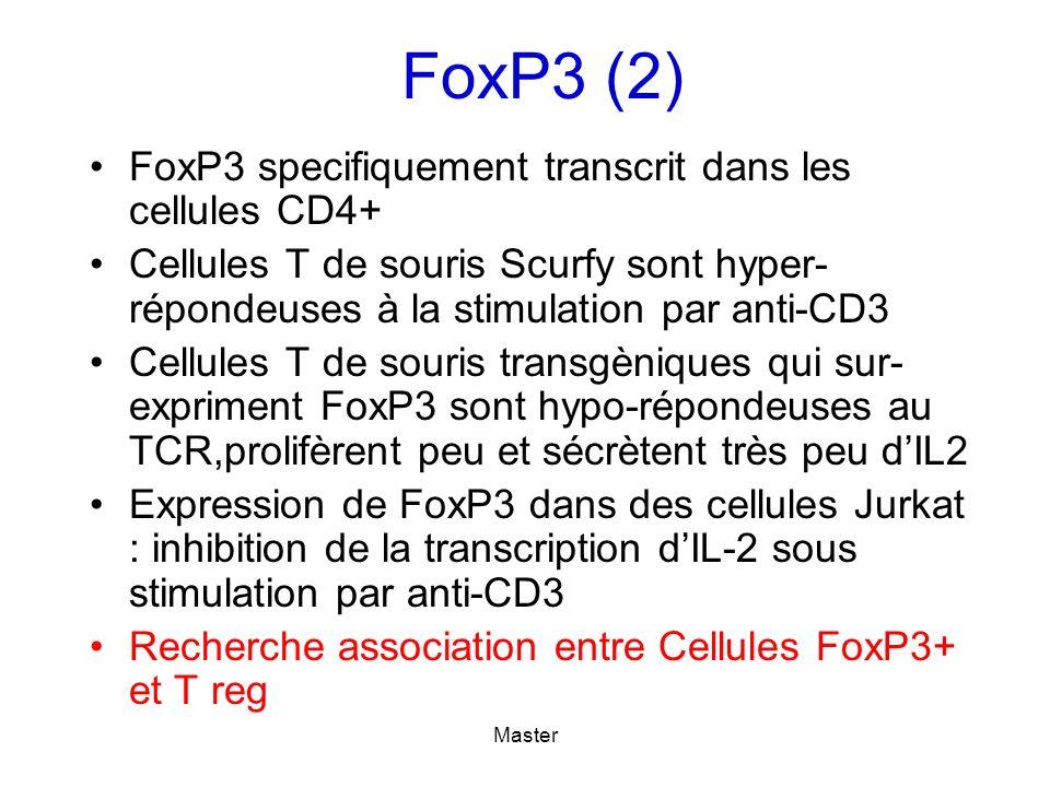 FoxP3 (2) FoxP3 specifiquement transcrit dans les cellules CD4+