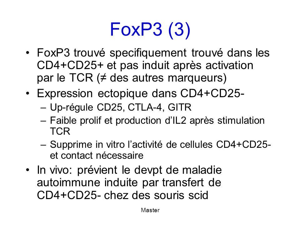 FoxP3 (3) FoxP3 trouvé specifiquement trouvé dans les CD4+CD25+ et pas induit après activation par le TCR (≠ des autres marqueurs)