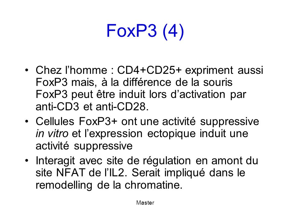 FoxP3 (4)