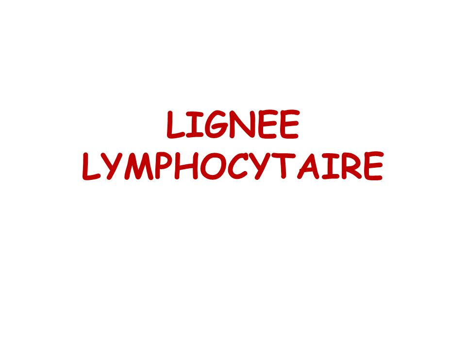 LIGNEE LYMPHOCYTAIRE