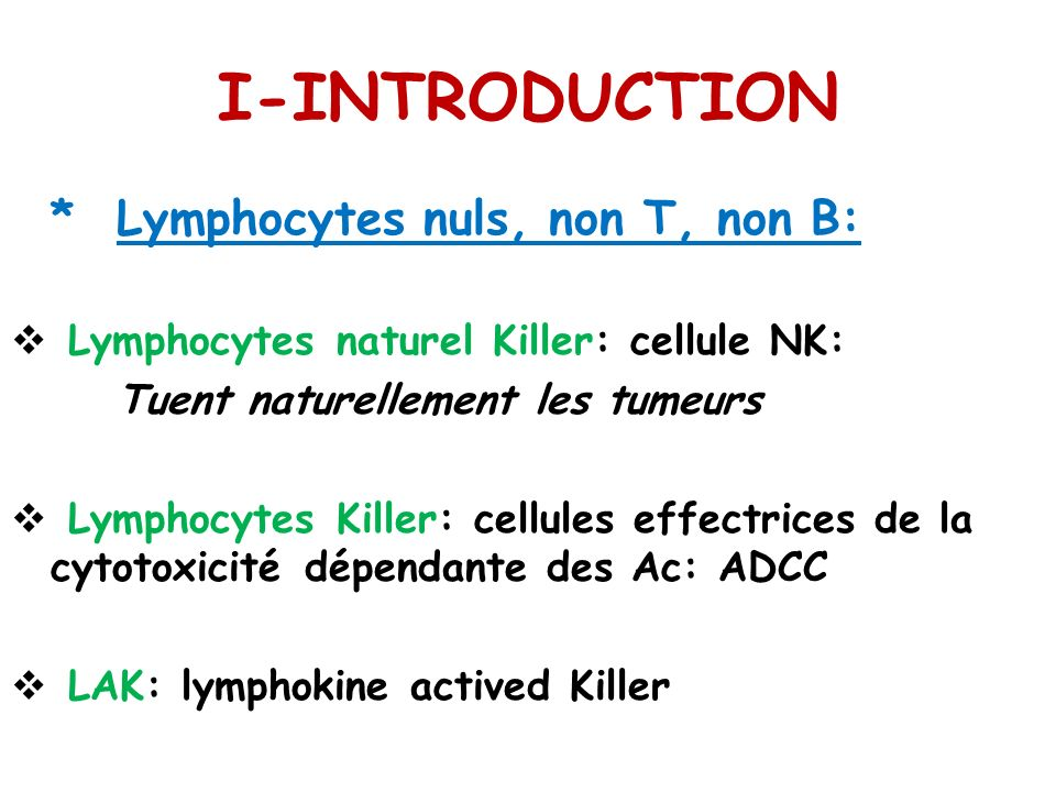 I-INTRODUCTION * Lymphocytes nuls, non T, non B: