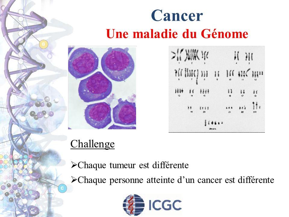 Cancer Une maladie du Génome
