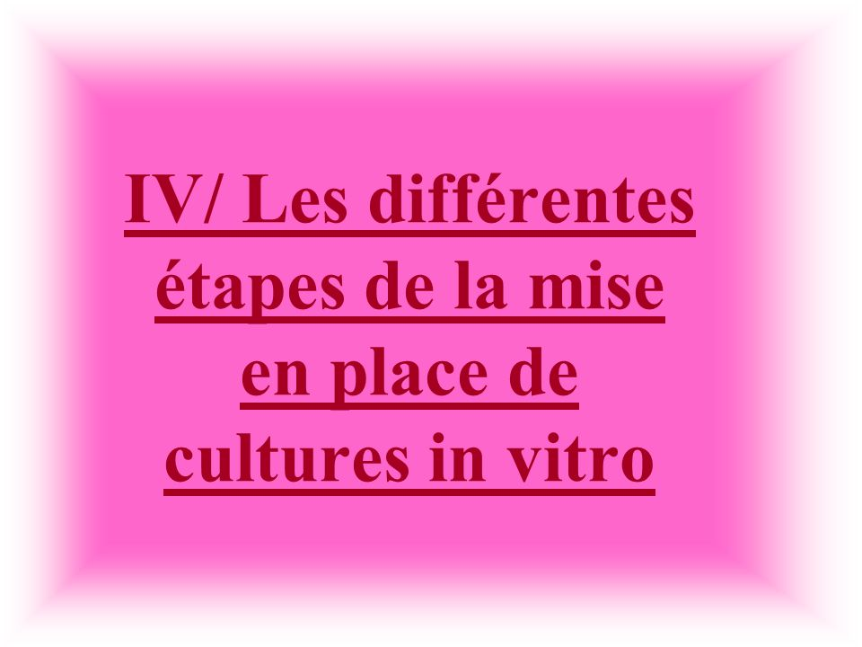 IV/ Les différentes étapes de la mise en place de cultures in vitro