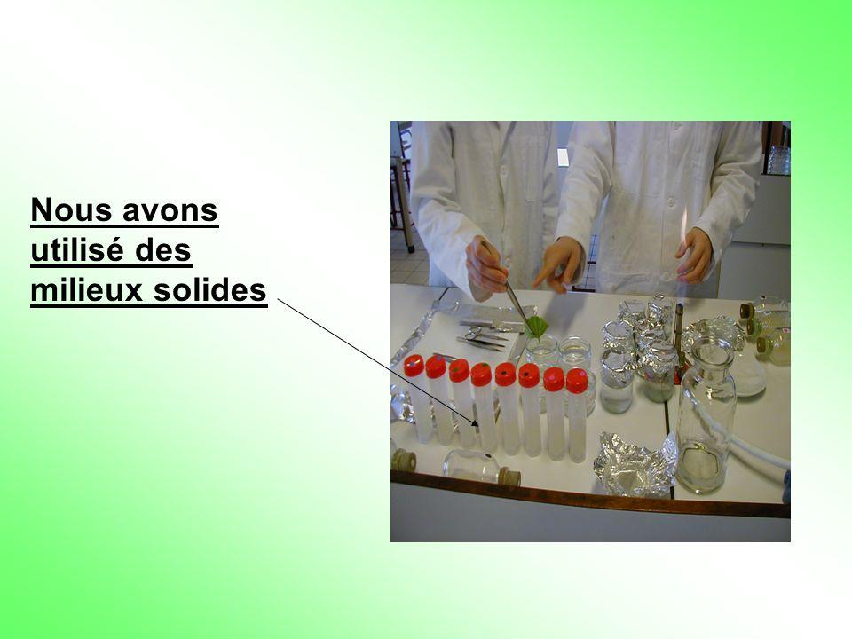 Nous avons utilisé des milieux solides