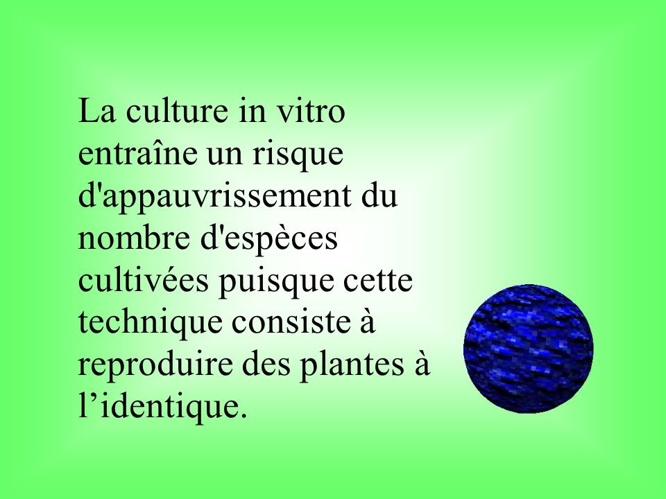 La culture in vitro entraîne un risque d appauvrissement du nombre d espèces cultivées puisque cette technique consiste à reproduire des plantes à l'identique.