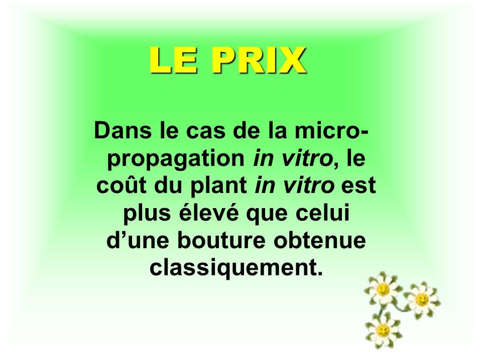LE PRIX Dans le cas de la micro-propagation in vitro, le coût du plant in vitro est plus élevé que celui d'une bouture obtenue classiquement.