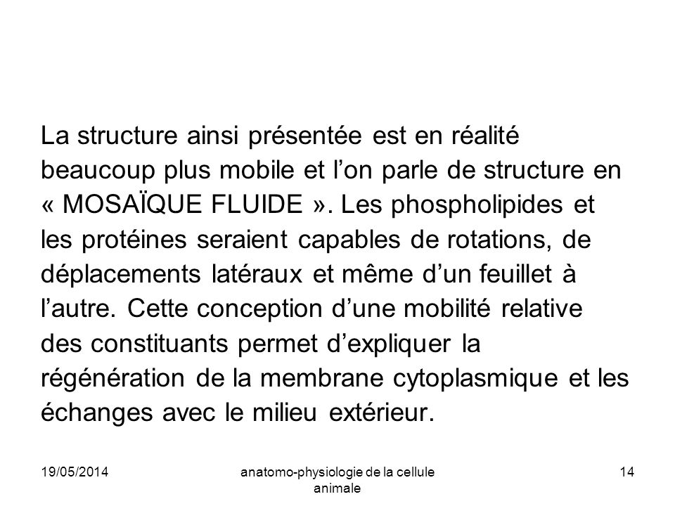 anatomo-physiologie de la cellule animale
