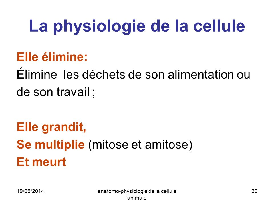 La physiologie de la cellule