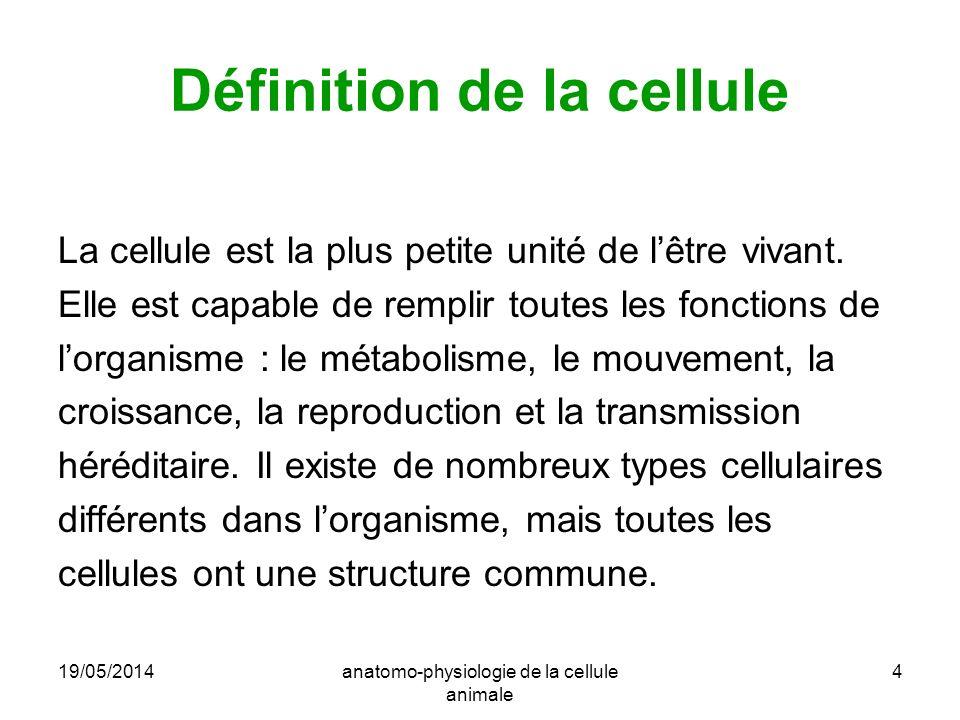 Définition de la cellule