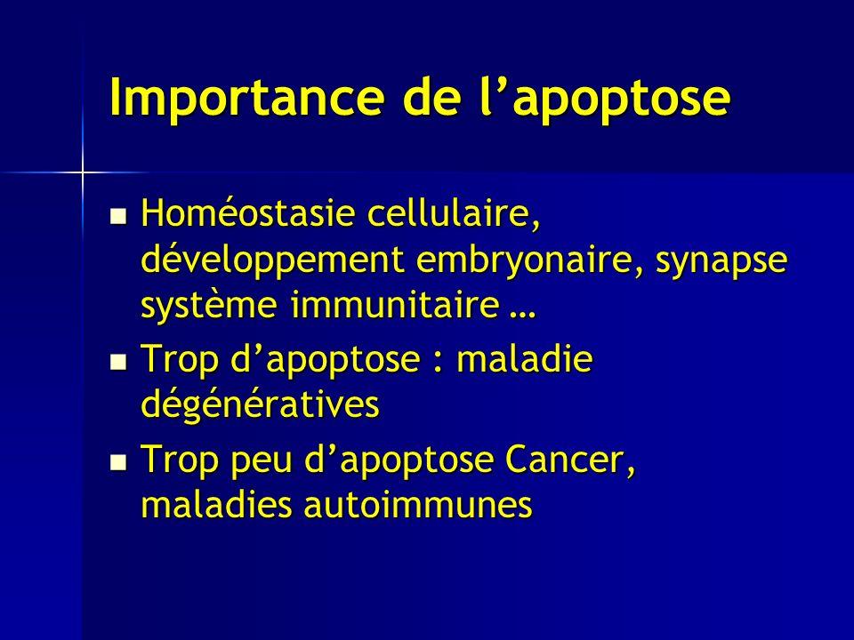 Importance de l'apoptose